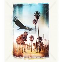 Condor Soaring Summer Palm Landscape