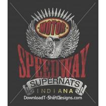 Vintage Motor Speedway Indiana 500