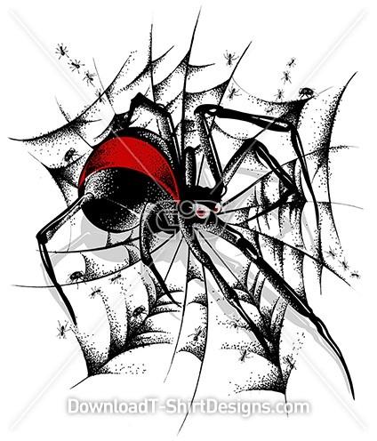 Red Back Spider Web