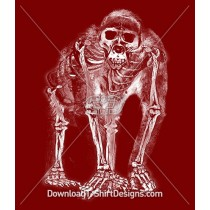 Monkey Ape Skeleton X-Ray Silhouette