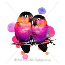 Colorful Tropical Love Birds