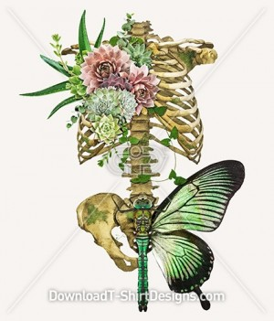 Organic Butterfly Cactus Flower Skeleton Collage