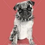 downloadt-shirtdesigns-com-2123263