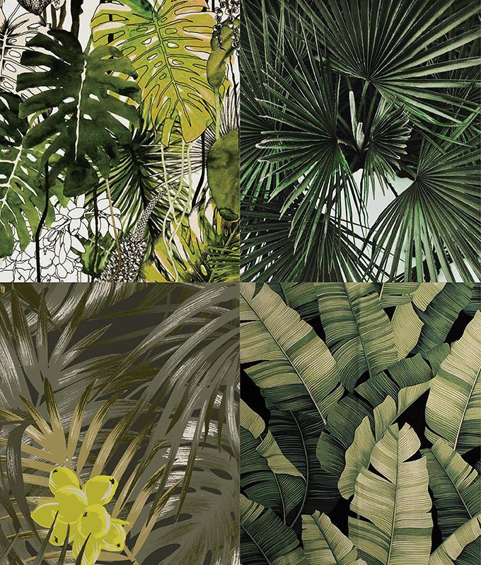 downloadt-shirtdesigns-deep-jungle-dark-palm